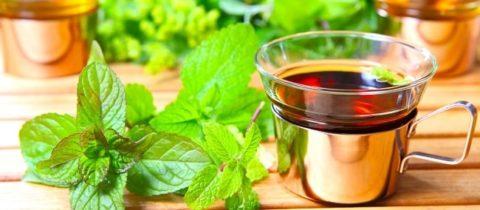 Мятный напиток поможет быстро подавить тошноту и нормализовать самочувствие.
