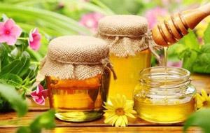 мед при гонартрозе