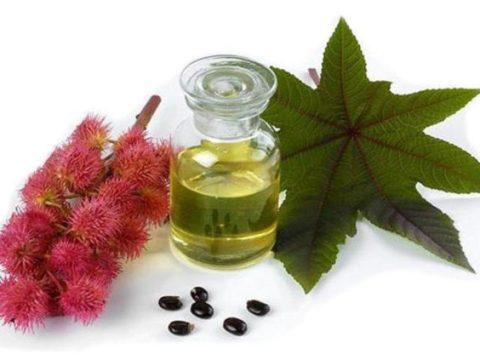 Касторовое масло на фото – идеальное средство для чистки кишечника.