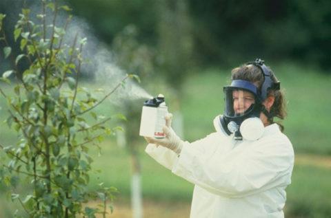 Пестициды могут стать причиной серьезных проблем со здоровьем