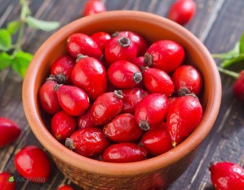 Шиповник – популярный источник витамина С