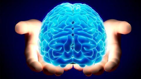 В ЦНС развивается гипоксия