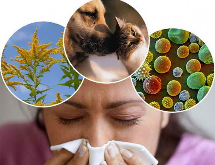 Аллергические поражения болит язык