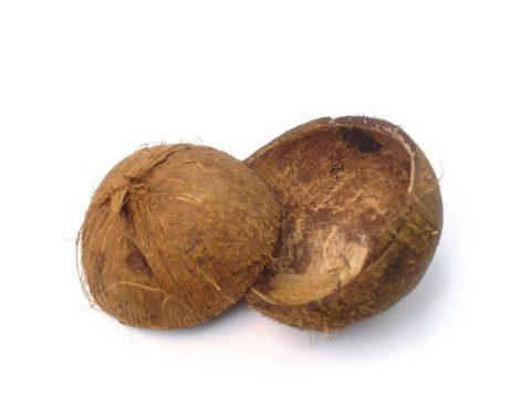 Скорлупа кокоса — один из видов сырья для производства угля