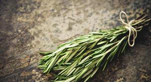 травы при остеоартрозе