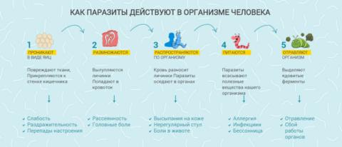 Основные симптомы паразитозов на разных стадиях