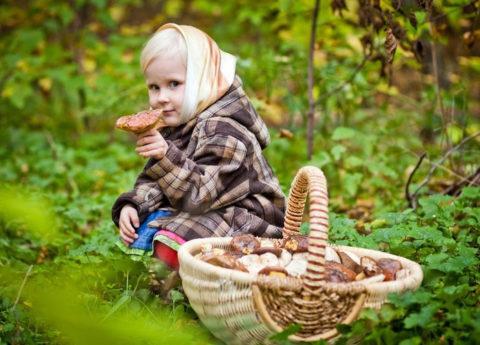 Малышам до трех лет есть «лесное мясо» нежелательно