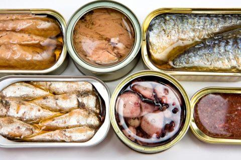 На прилавках магазинов существует множество видов консервов из разных сортов рыбы