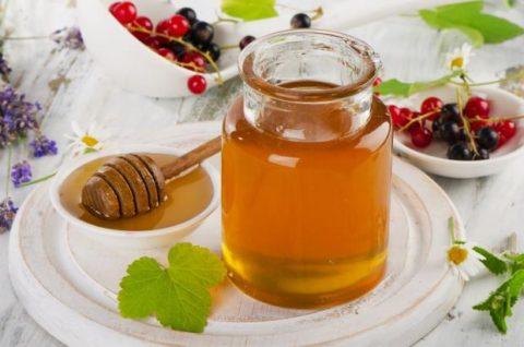 Мед имеет богатый минеральный и витаминный состав.