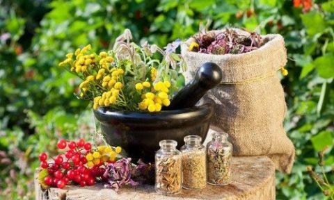 Сборы лекарственных трав – лучшее средство для чистки кишечника.
