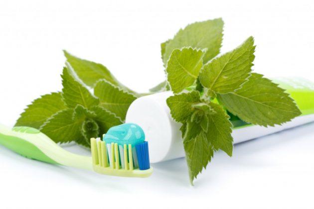 В состав многих зубных паст входит экстракт мяты