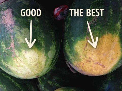 Хорошая и плохая ягода с точки зрения пищевого качества