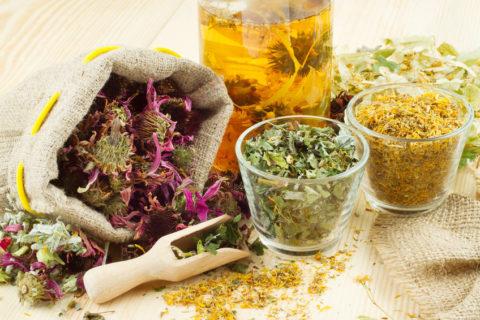 Любое лекарственное растение (на фото) обладает особенными свойствами и противопоказаниями.