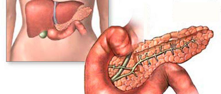 Пищеварение и поджелудочная железа