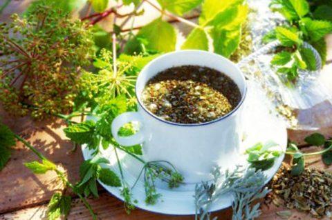 Отвары лекарственных трав следует принимать строго по рецепту