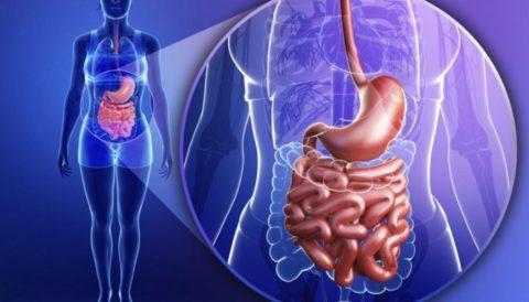 Регулярное очищение кишечника – залог здоровья всего организма.