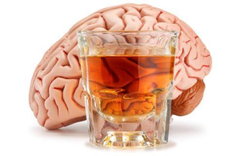 При употреблении алкоголя в первую очередь происходит поражение головного мозга