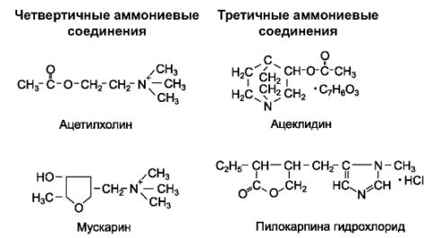 Химическая формула яда