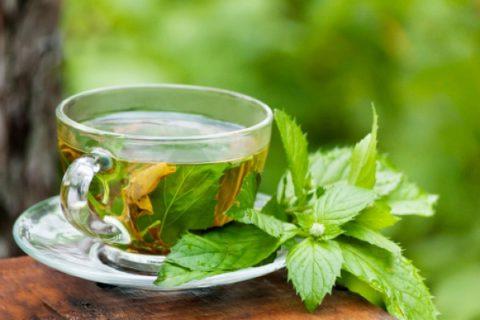 Ароматный травяной чай, представленный на фото, поможет побороть тошноту.