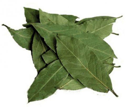 Листья лавра (на фото) препятствуют образованию холестериновых бляшек.
