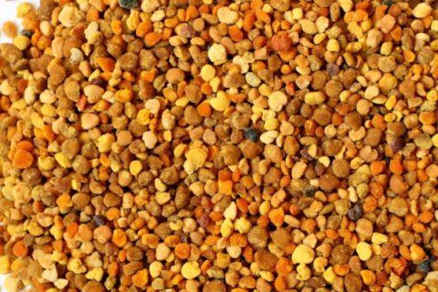Прополис (на фото) обладает мощными антипаразитарными, очищающими и исцеляющими свойствами.