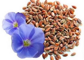 Употреблять семя льна можно и в чистом виде.