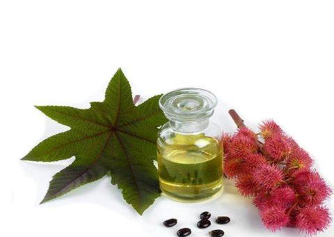 Касторовое масло – мягкое слабительное, в зависимости от дозы обладающее слабительным или послабляющим действием