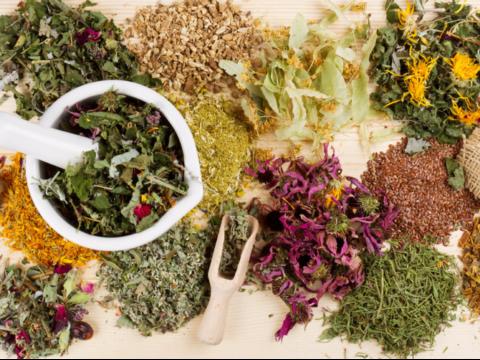 Могут быть полезны лекарственные растения