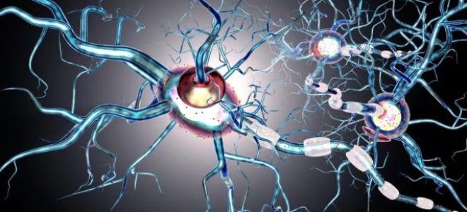 Течения рассеянного склероза: формы, виды, стадии