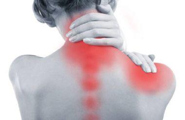 болевые точки спины