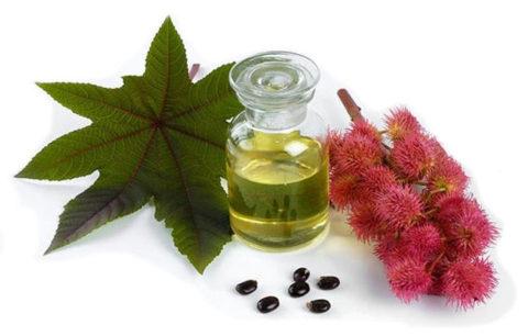Касторовое масло (на фото) – безопасное и эффективное средство для очищения организма.