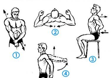 комплекс упражнений плечи