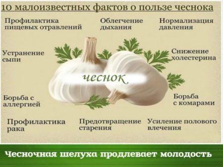 Применение чеснока при диабете, полезные свойства и рецепты лечебного состава