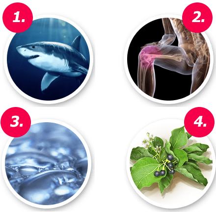 ингредиенты акульего жира