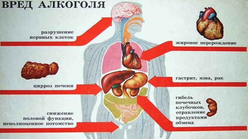 Опасность алкоголя для организма