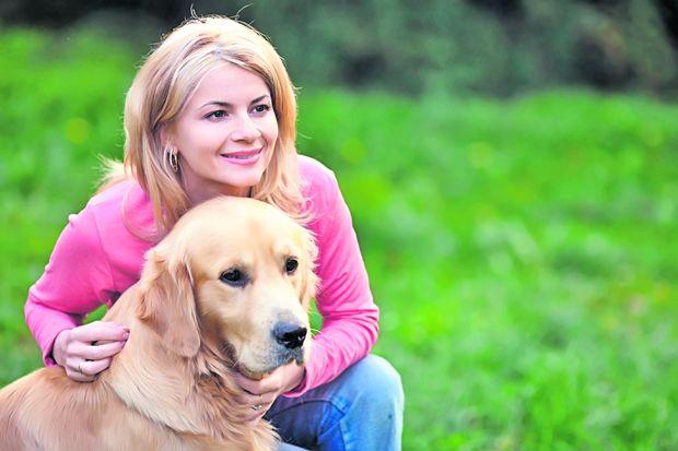 Зоотерапия для лечения стрессов