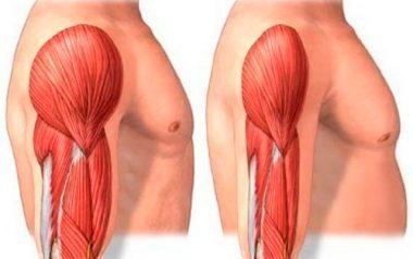 миозит мышц