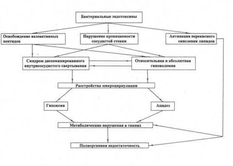 Механизм развития патологии