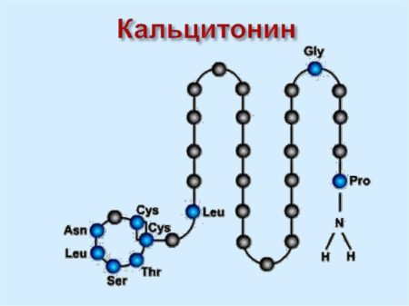 Механизм действия «Виктозы», инструкция по применению, аналоги, цена, отзывы, побочные эффекты, состав, форма выпуска