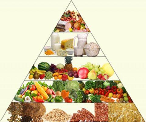 Правильное питание – основа здоровья.