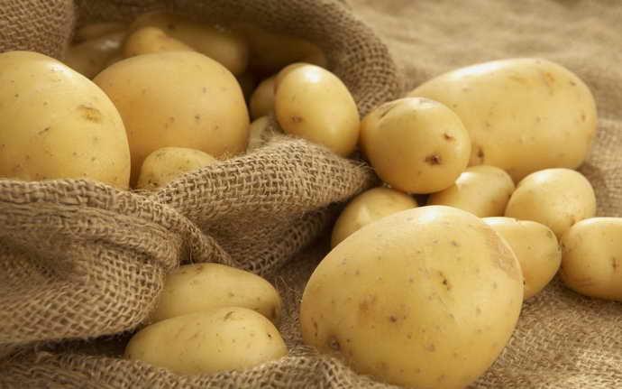 Картофель в лечении стоматита