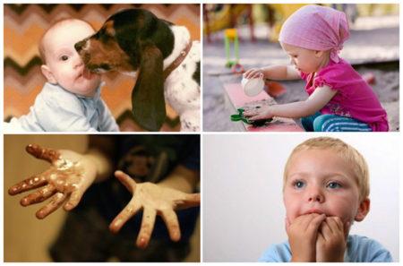 Диагностирование глистов в моче, симптомы поражения, виды гельминтов и способы их устранения