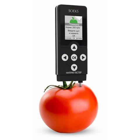 Сегодня содержание этих веществ в овощах и фруктах можно проверить самостоятельно