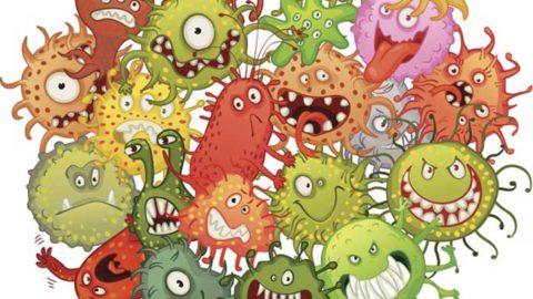 Большинство возбудителей относятся к условно-патогенной флоре