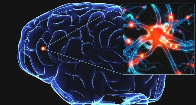 Пораженный мозг человека