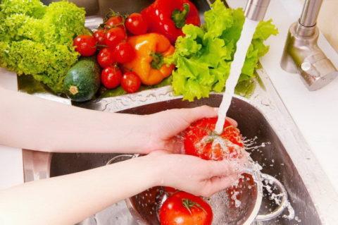 Основы профилактики – правильное мытье и обработка продуктов, особенно мяса, рыбы и свежих плодов
