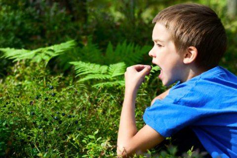 Детское любопытство может привести к трагедии