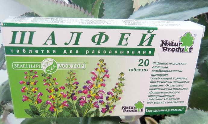 Шалфей Зеленый доктор от стоматита