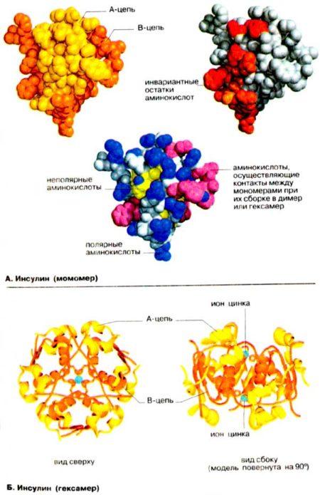 Механизм действия инсулина в обычных таблетках, побочные эффекты, состав, цена, аналоги, показания, противопоказания и отзывы
