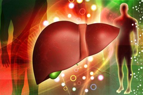 В процессе жизнедеятельности организм постоянно подвергается воздействию вредных веществ